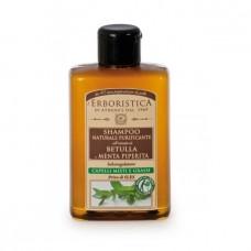 Σαμπουάν με μέντα- L'Erboristica Shampoo Betulla 300ml